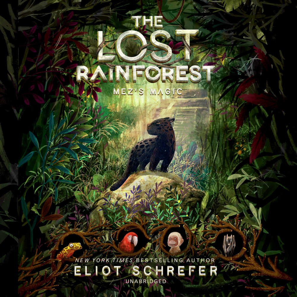 Mez's Magic: Library Edition (The Lost Rainforest)