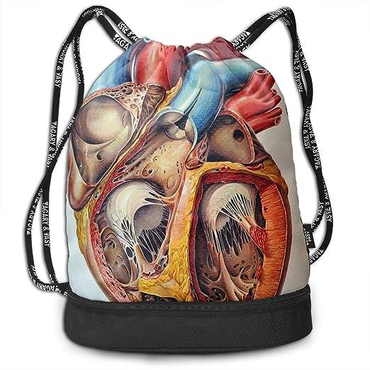 Mr.Roadman Mochila Multifuncional - Anatomía Humana corazón ...