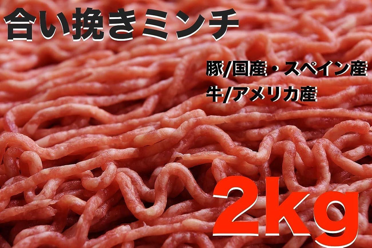 電気陽性判定舞い上がる[冷蔵] 牛豚合挽肉(解凍) ミンチ 200g (ハンバーグ、つみれ、肉団子)