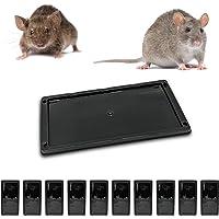 Muispiek met rattenlijm, tegen knaagdieren, dood voor ratten, krachtig, alternatief voor ratten, tegen ratten, ratten…