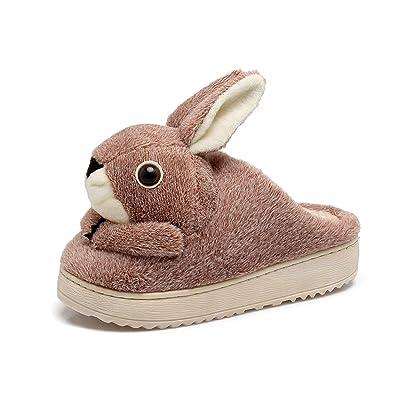 Y-Hui cotone d'inverno pantofole, Home scarpe antiscivolo, pantofole, donne,265 montare (40, 41 piedi),caffè