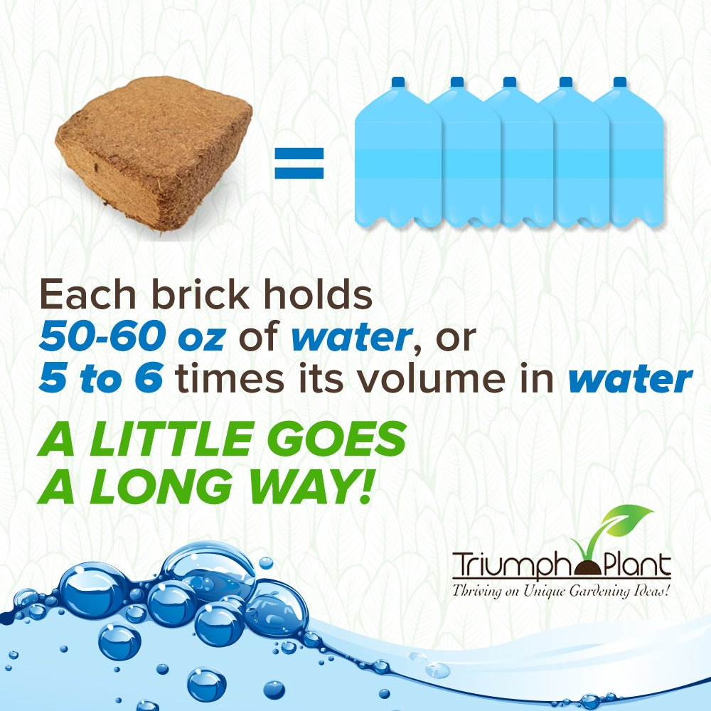 Coconut Coir Fiber - 4 Pack of Convenient Blocks - All Natural and Environmentally Friendly Coconut Peat by Triumph Plant (Image #6)