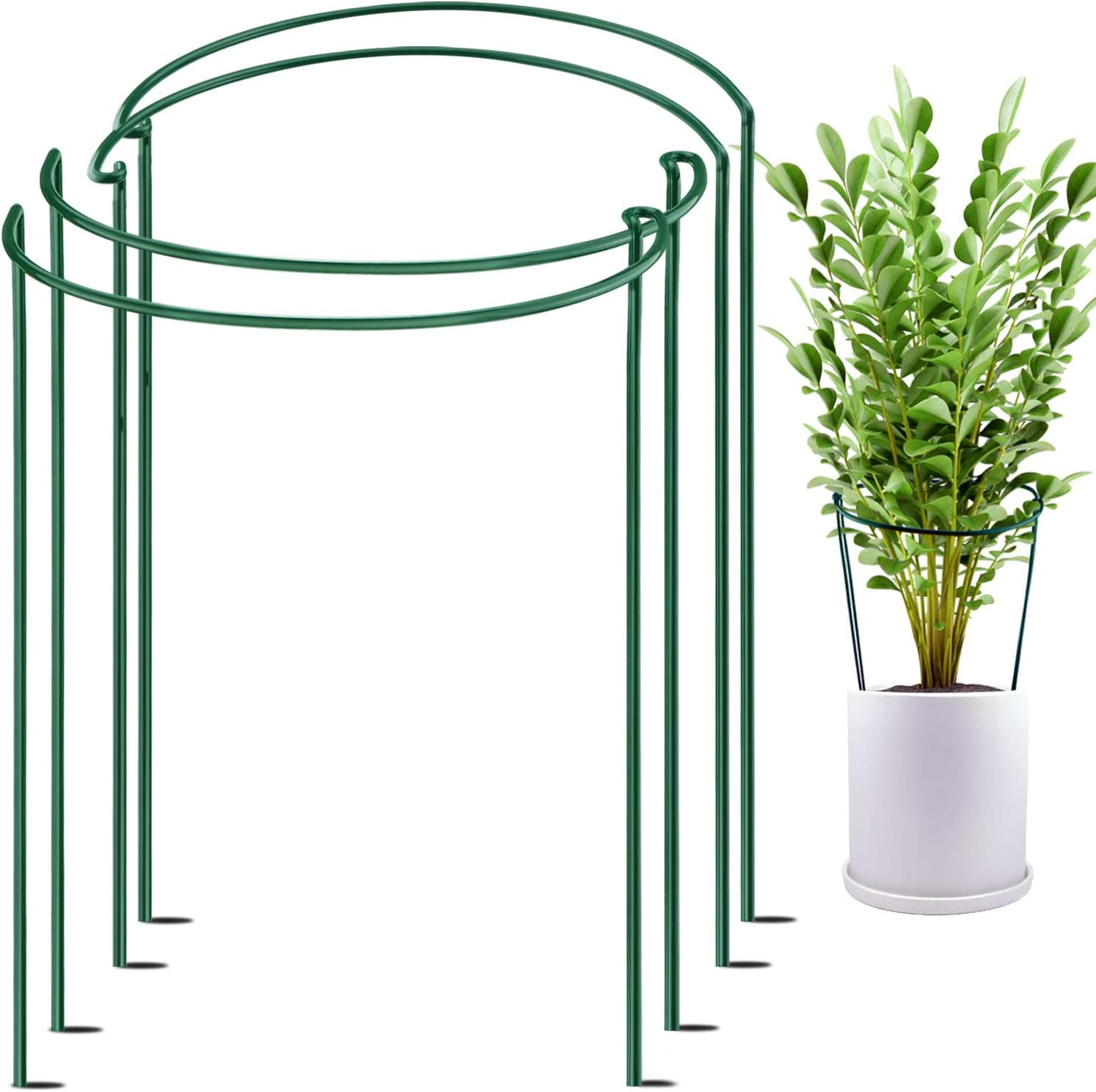"""HiGift 4 Pack Plant Support Stake, Metal Ring Garden Stakes for Plant, Half Circle Plant Supports for Tall Potted Plants Indoor, Plant Support Cage for Peony, Tomato,Hydrangea, (10"""" Wide x 15.8"""" High)"""