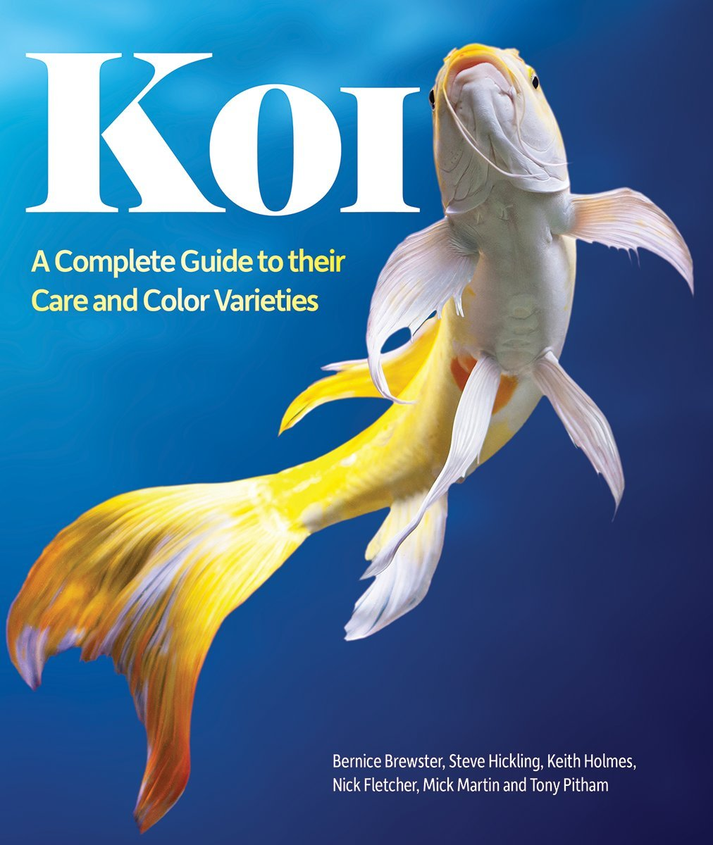 Koi A Complete Guide To Their Care And Color Varieties Brewster Bernice Fletcher Nick Hickling Steve Holmes Keith Martin Mick Pitham Tony Burgess Dr Peter 9781770855199 Amazon Com Books
