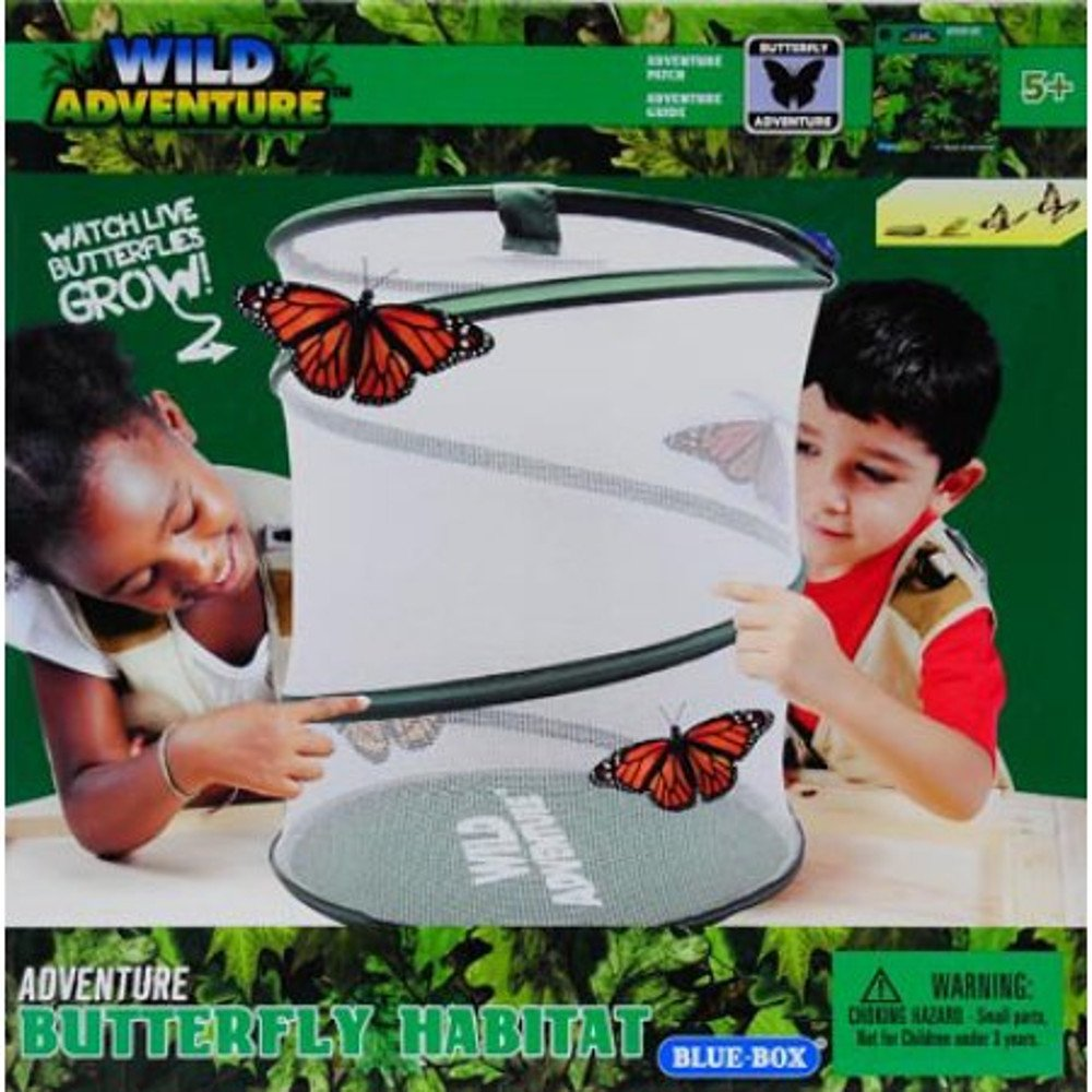 amazon com wild adventure live butterfly habitat toys u0026 games