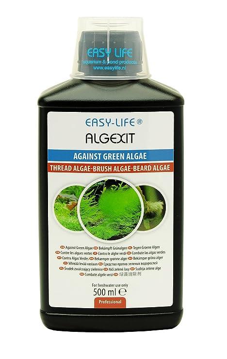 Easy Life Vida fácil AlgExit