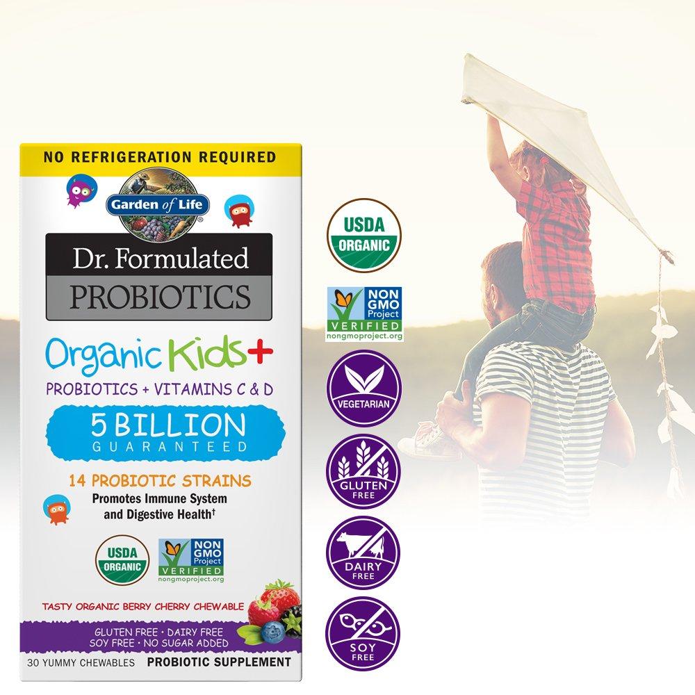 Garden Of Life Dr Formulated Probiotics Organic Kids Acidophilus And Probiotic Promotes