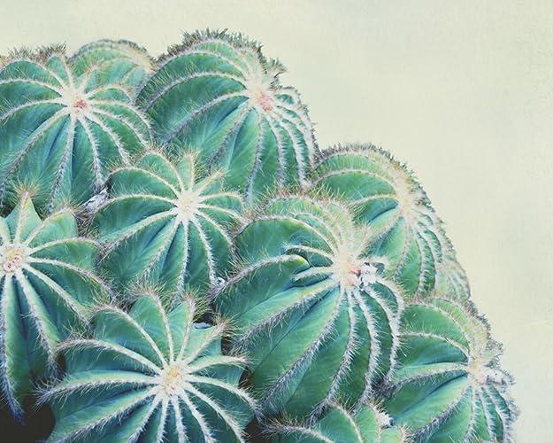 amazon com modern cactus artwork 8x8 to 30x45 inch green horizontal