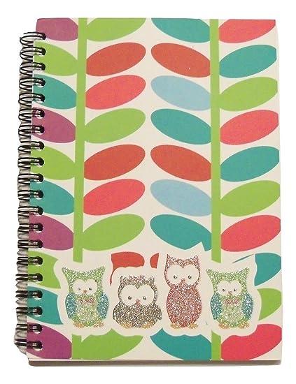 Amazon Com Hootin Good Time Spiral Notebook Glittery Multicolored