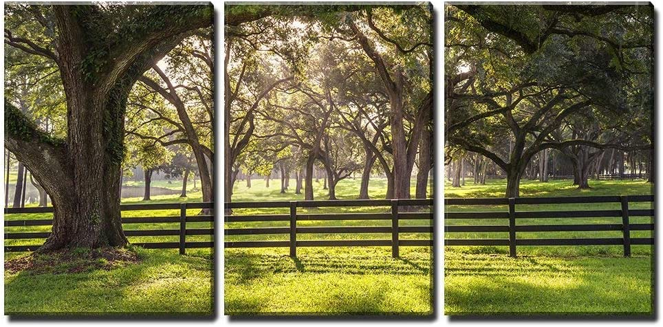 "wall26 - 3 Piece Canvas Wall Art - Large Oak Tree Branch with Farm Fence in The Rural Countryside Looking Serene - Modern Home Decor Stretched and Framed Ready to Hang - 24""x36""x3 Panels"