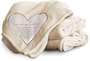 Pavilion Gift Company 19500 Comfort Special Thick Warm 320 GSM Royal Plush Throw Blanket