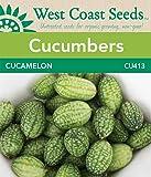 Cucumber Seeds - Cucamelon