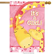 Briarwood Lane It's A Girl House Flag Baby Shower Giraffes Welcome 28  x 40