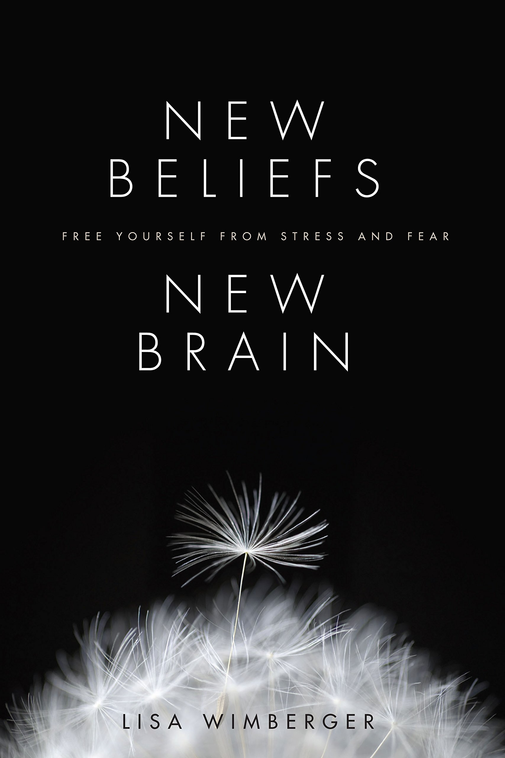 Download New Beliefs, New Brain: Free Yourself from Stress and Fear pdf