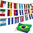 Anley Latin America 20 Countries String Flags - Assorted Latino Flag Banners for International Events Conference Party Decora