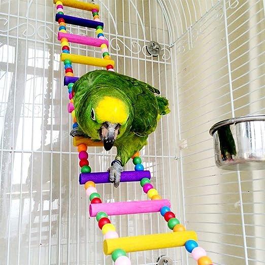 CHYIR - Escalera de Madera para Mascotas, Jaula de pájaros, Hamaca para Colgar, Guacamayo, pájaro del Amor, (Escalera para pájaros): Amazon.es: Productos para mascotas