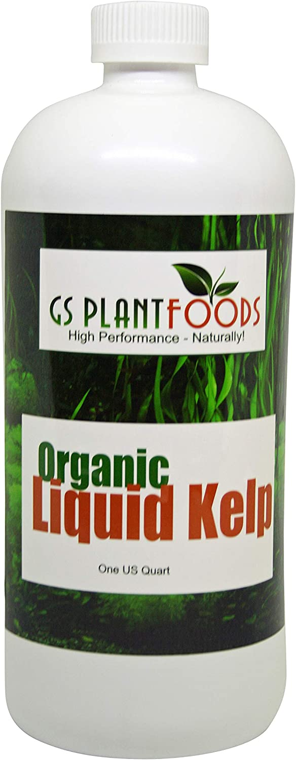 Liquid Kelp Organic Seaweed Fertilizer
