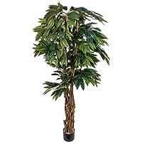 Euro Flora Yapay Mango Ağacı 180 Cm