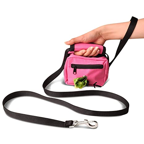 99e461bdf4b1 Amazon.com   Leash Gear 3-in-1 Dog Leash Poop Bags Waste Holder ...