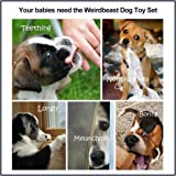 Weirdbeast Dog Toy Gift Set Rubber Balls Ropes Chew Squeaky Cotton Plush Pet Dog Teething Training Play Toys Flying Discs for Small Medium Large Dogs - Keep Pets Happy and Healthy(10 pack)