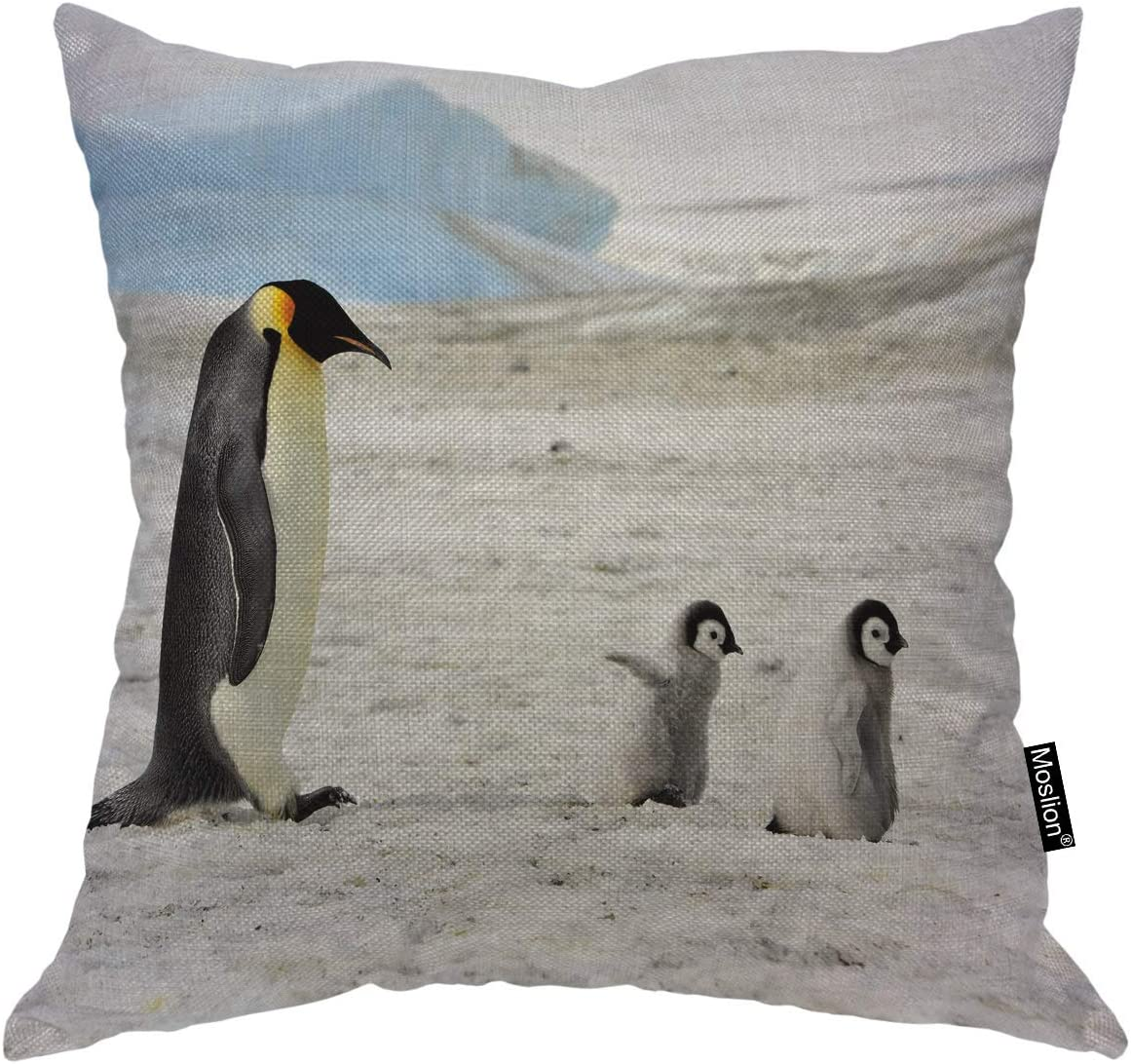 Moslion Emperor Penguin With Two Chicks Throw Pillow Cover Antarctica Animal Parent Nature Winter Ice 20x20 Inch Square Pillow Case Cushion Cover For Home Car Decorative Cotton Linen Home Kitchen