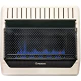 ProCom MG30TBF Ventless Dual Fuel Blue Flame Wall Heater Thermostat Control, 30,000 BTU