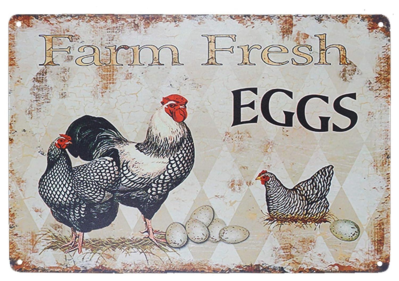 Señal de gallina Divertida con diseño de Huevo Fresco ...