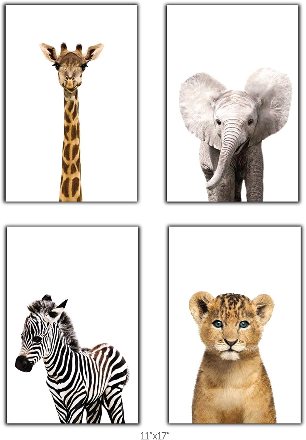 Designs by Maria Inc. Safari Baby Animals Nursery Decor Art - Set of 4 UNFRAMED Wall Prints (Option 2 (11x17)