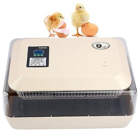 zjchao Incubadora del Huevo volteo Digital automatico con Control de Temperatura,24 Huevos