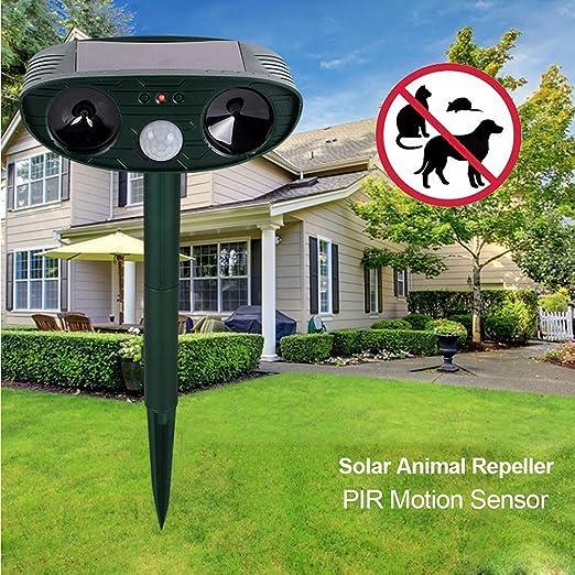 Candora ™ Ahuyentador animal, energía solar ultrasónico Ahuyentador de señales, animales en el exterior y jardín solar expeller con Disuasión Solar, como pájaros, roedores, ratón, gato, perro: Amazon.es: Jardín