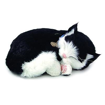 Perfect Petzzz Black and White Shorthair Kitten Plush: Toys & Games