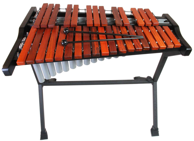Student Xylophone