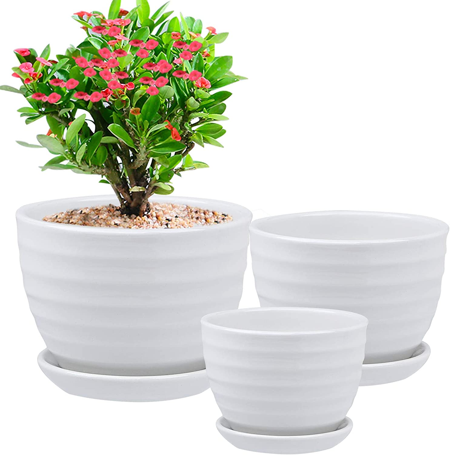 3 Pack Ceramic Plant Pots, (Crazystorey) White Garden Flower Pot Round Indoor Planters with Drainage Hole Saucer for All House Plants and Flowers Modern Home Decor, Large, Small, Medium (Style 2)