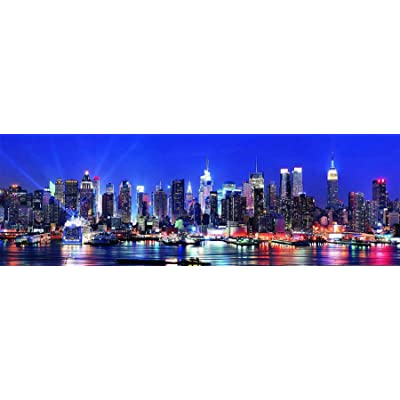 New York City Skyline 500 Piece Panoramic Puzzle: Toys & Games