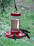First Nature Hummingbird Feeder, 16 oz