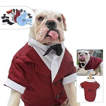 Amazon.com: Lovelonglong - Traje de tuxedo formal para perro ...