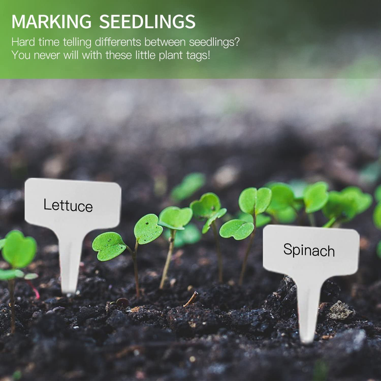 200pcs T-type PVC Waterproof T Tag Plant Markers Premium Nursery Garden Labels 6 x 10cm Greyish White Eco Friendly Garden Labels