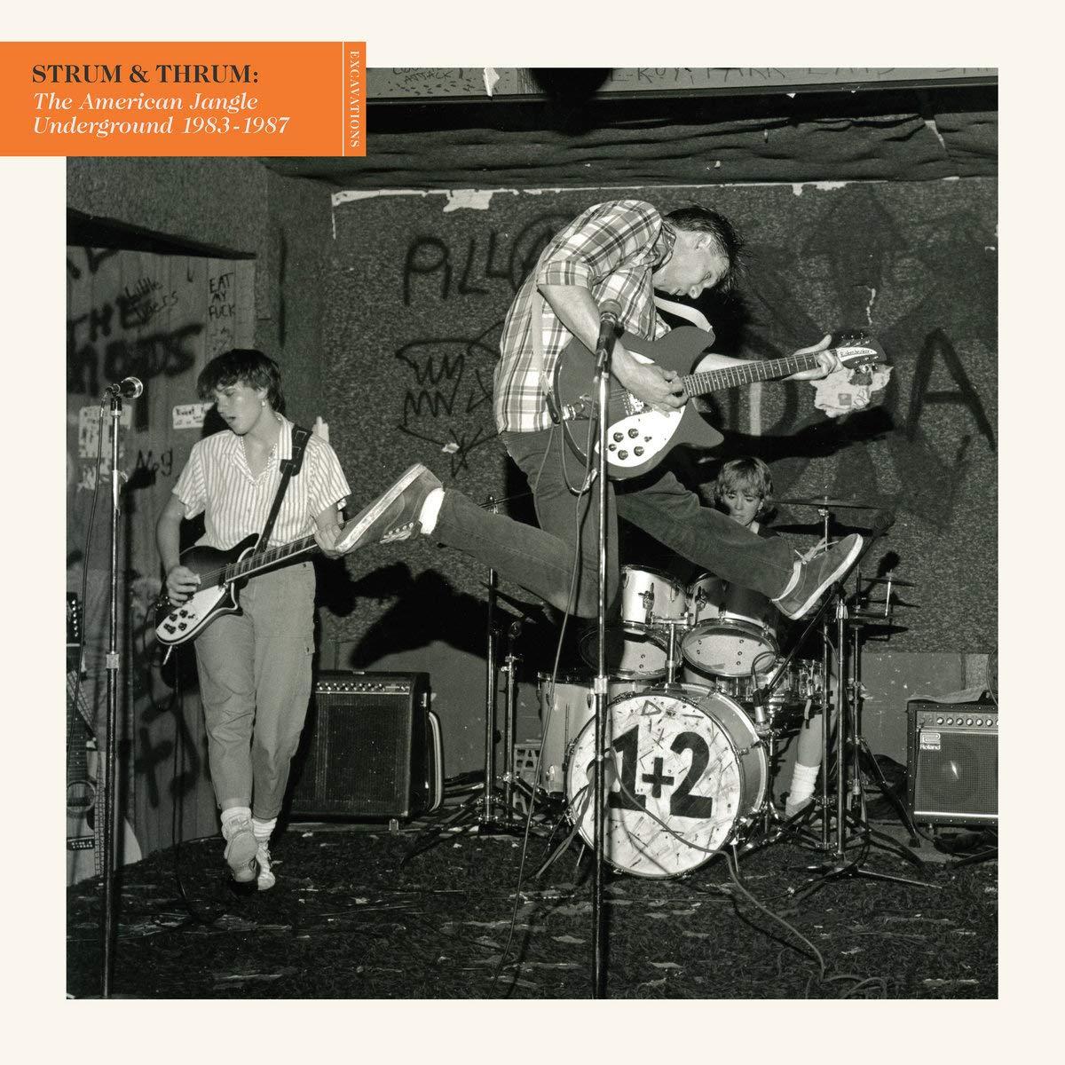 Strum & Thrum: The American Jangle Underground 1983-1987 [Vinilo]