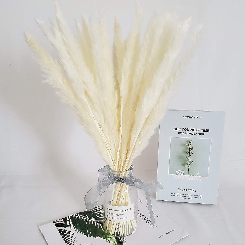 20 Tall Large Pampas Grass Fluffy for Flower Arrangements Wedding Home Decor 30 pcs Natural Dried Pampas Grass