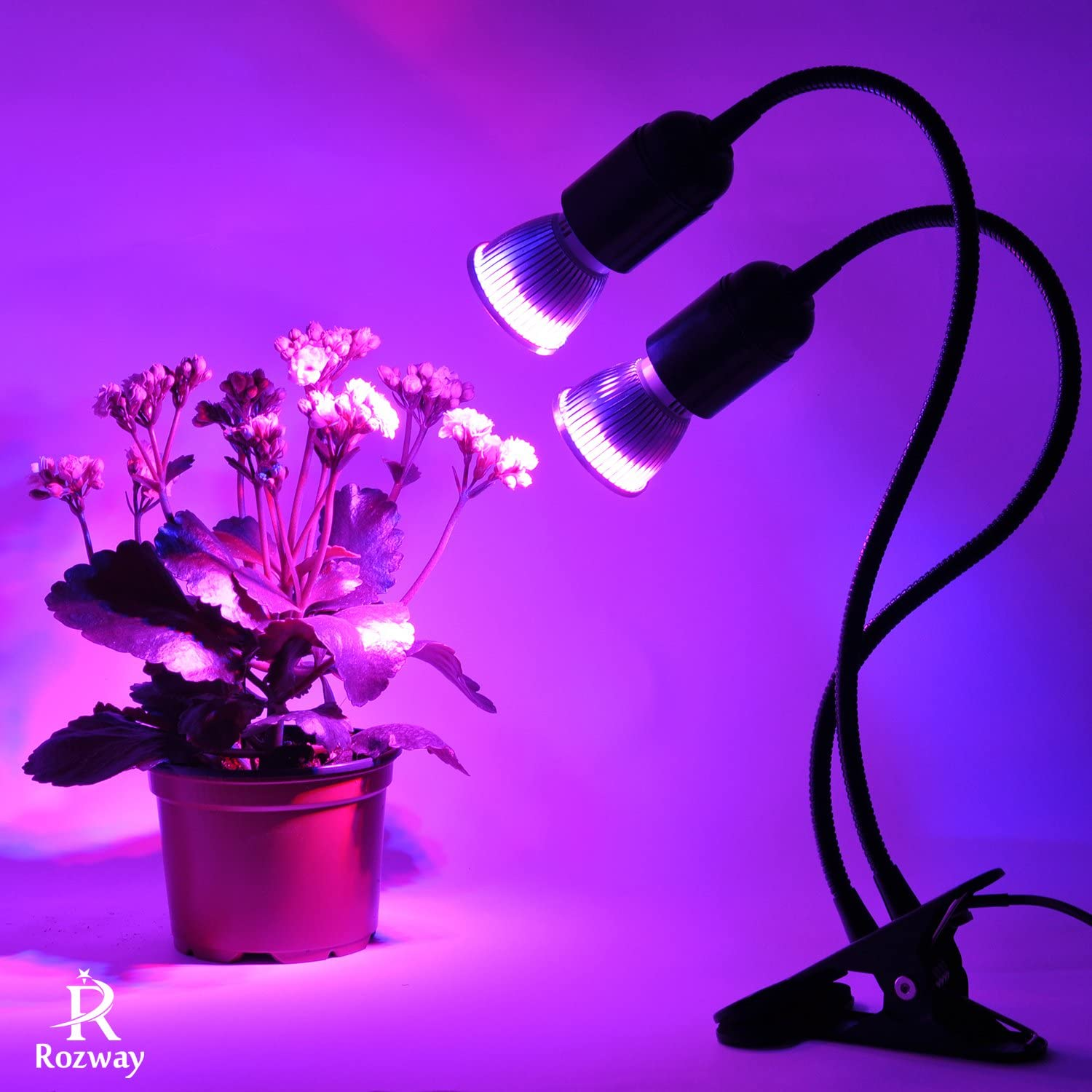 Grow Light, Rozway Grow Lamp for Indoor Plants | HIGH YIELDS | Dual Head Gooseneck Plant Lights for Indoor Plants Red Blue Spectrum with Replaceable Bulbs