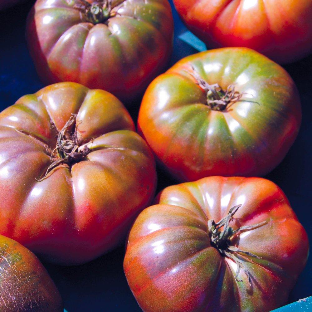 Cherokee Purple Beefsteak Tomato Seed