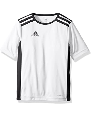 f6d07abc0 adidas Youth Entrada 18 Jersey