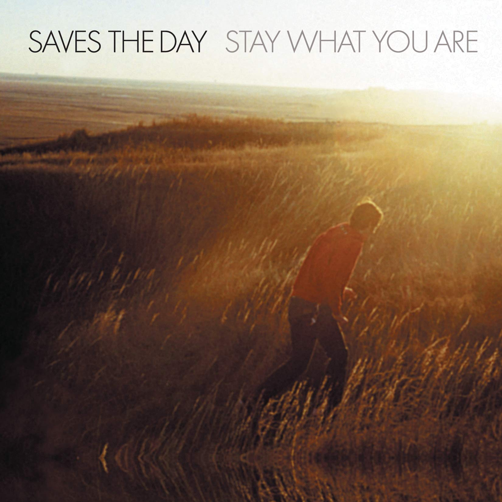 Vinilo : Saves the Day - Stay What You Are (LP Vinyl)