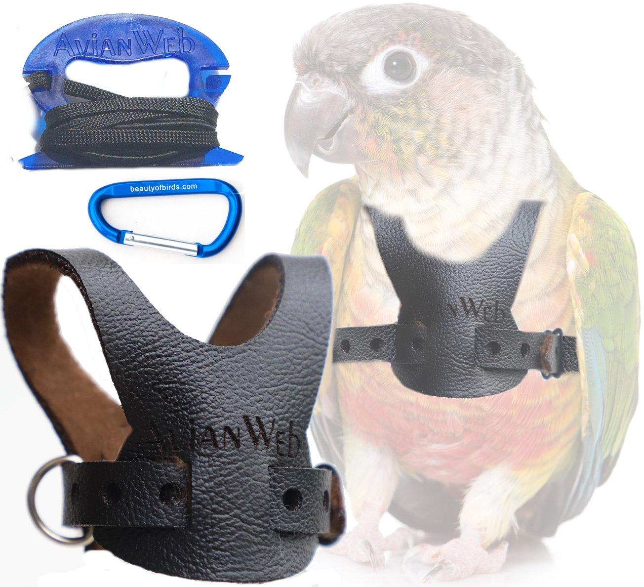 Avianweb EZ Rider Bird Harness with 8 Ft Leash (Conure/Small (Greencheeks))