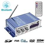 WINGONEER 12V Hi-Fi Digital Stereo Audio Amplifier