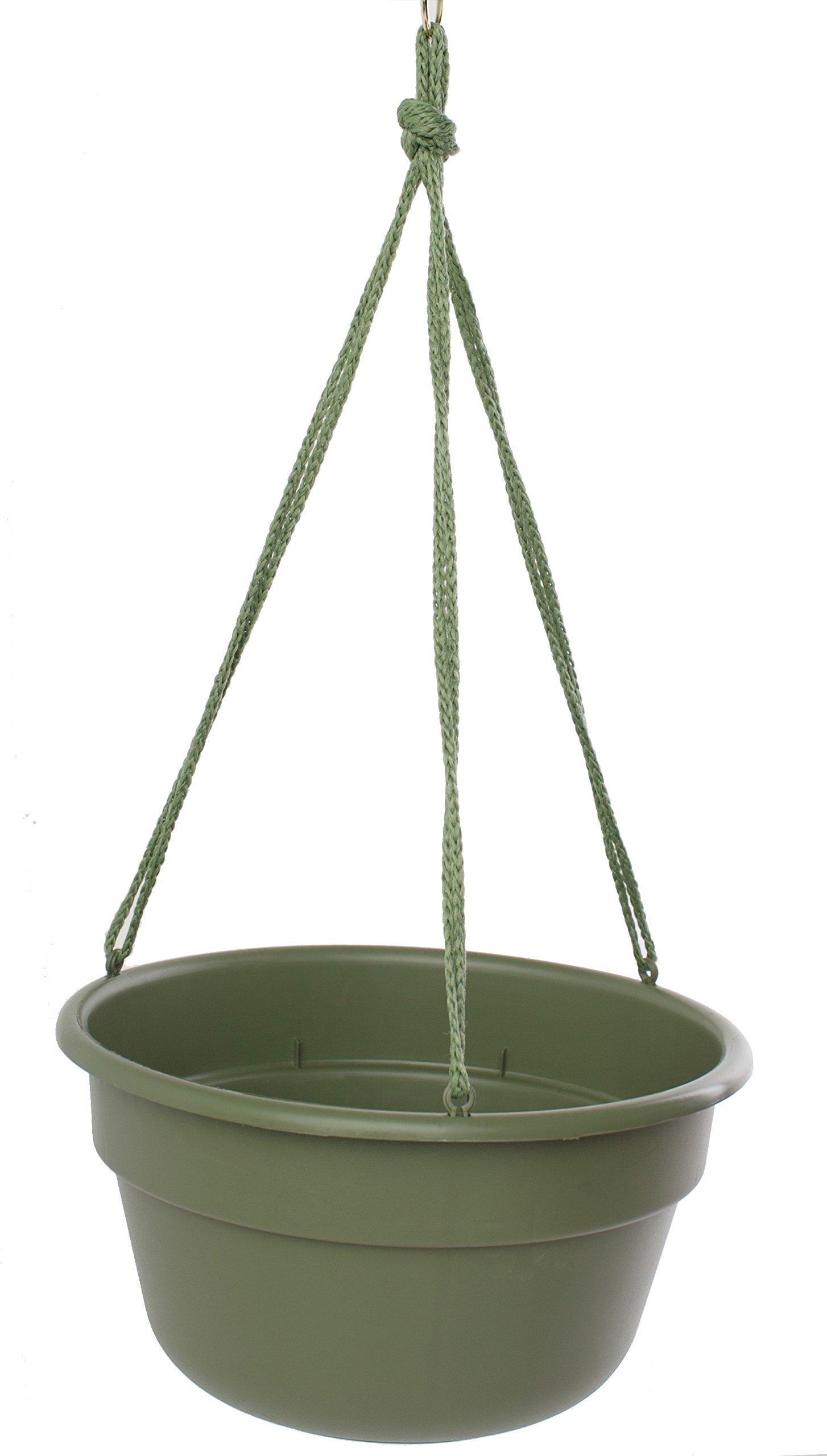 Bloem DCHB1242-12 12-Pack Dura Cotta Hanging Basket/Planter, 12-Inch, Living Green by Bloem