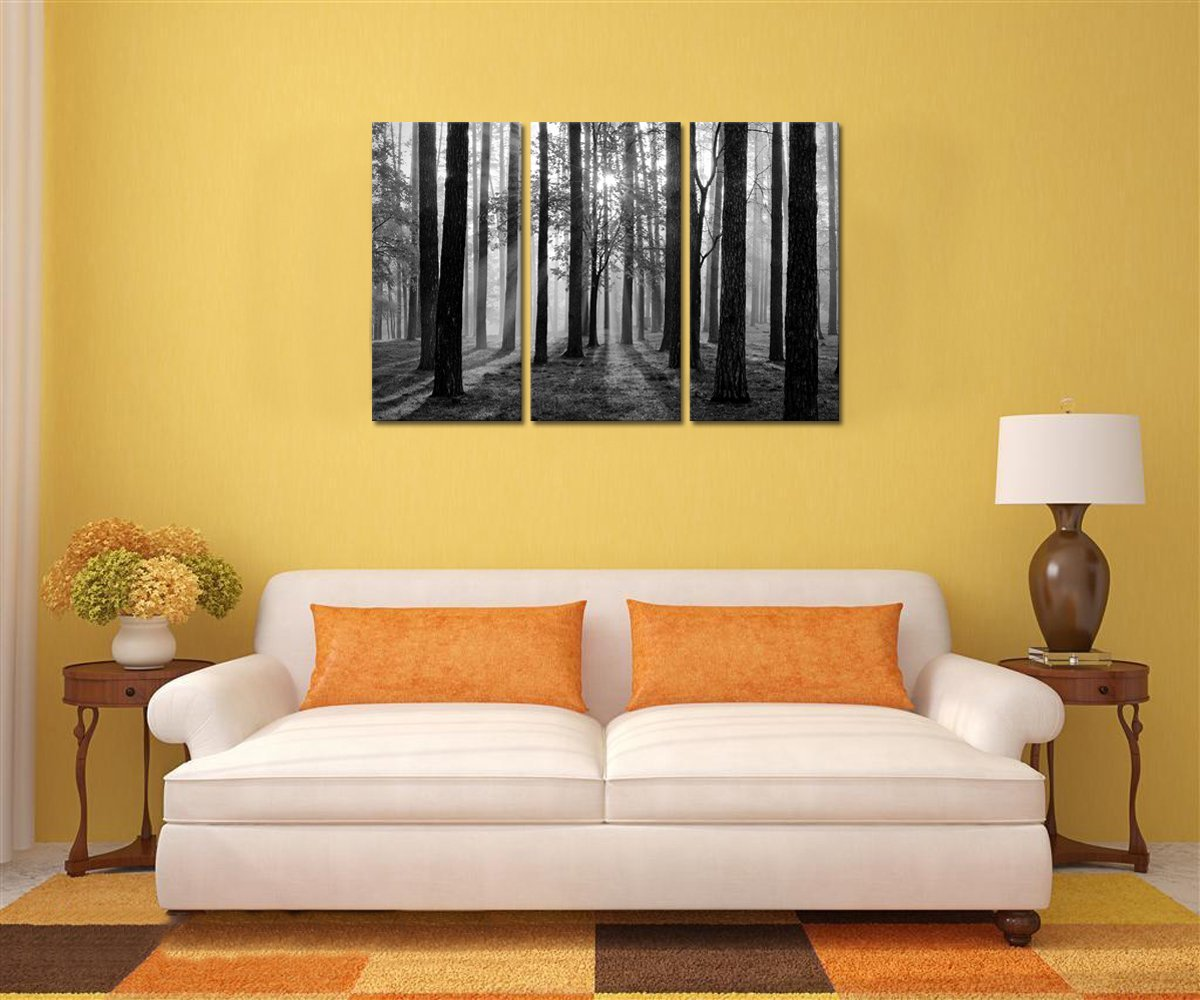 Amazon.com: Black and White Landscape Canvas Wall Art, Modern Wall ...