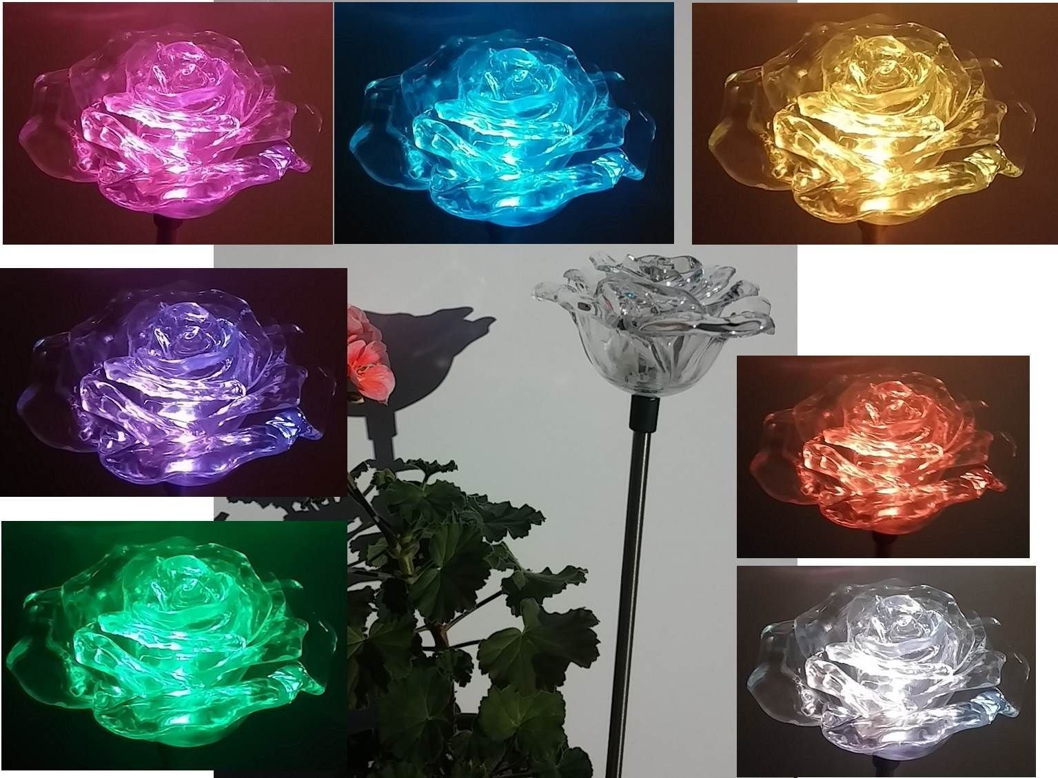 Beautiful Solar Clear Rose Light , Multi-color Color Changing Flower Garden Stake Outdoor Yard Decor Landscape LED Lamp Lights, Great Gift by Florals