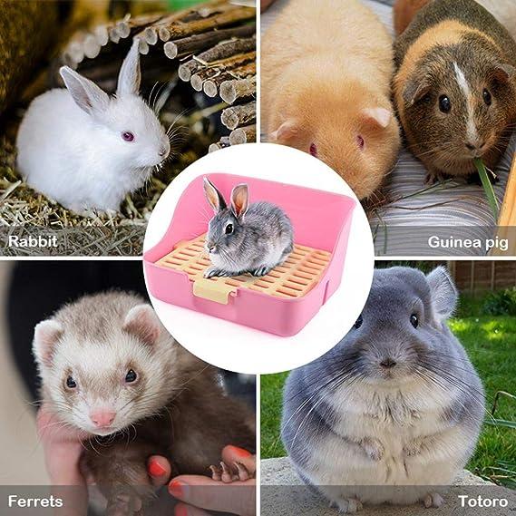 Random Color Potty Trainer Corner Litter Box for Small Rat Guinea Pig MINGZE Pet toilet Hamster
