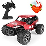 RC Car for Kids, 1:18 Remote Control Car Electric Racing Car Off Road, High-Speed Off Road Desert Buggy Vehicle 2.4Ghz 2WD Electric Racing Car